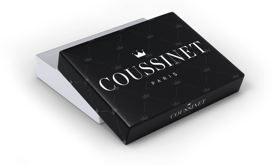 Haute couture clothing for dogs by Coussinet Paris