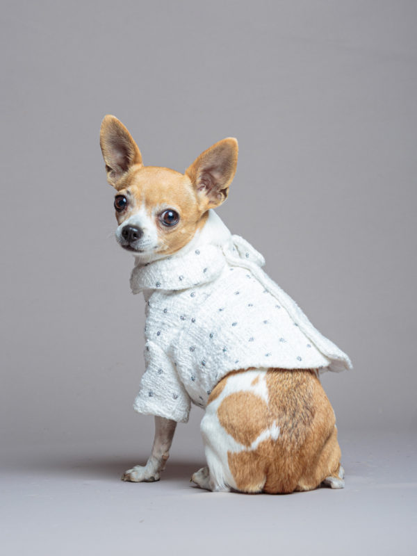 Gabrielle Jacket by Coussinet Paris luxury wedding outfit for dog