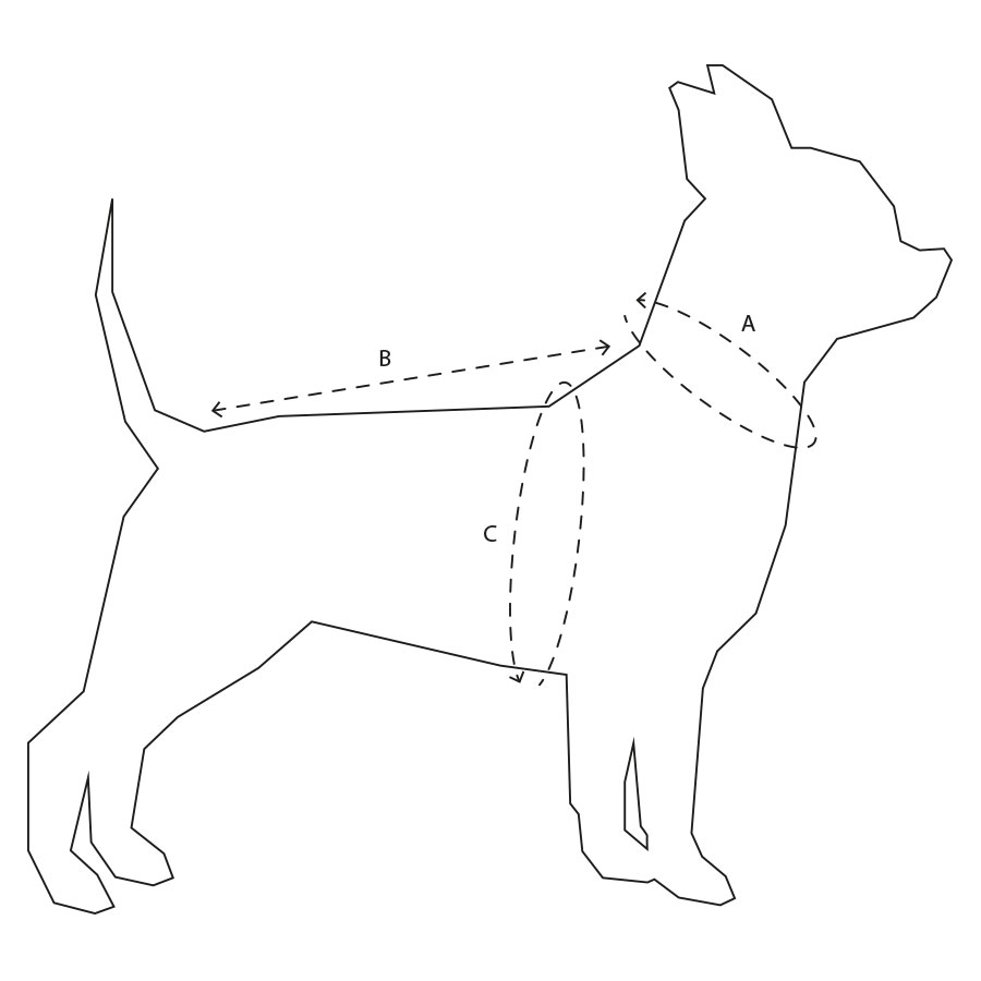 How to measure your dog by Coussinet Paris news